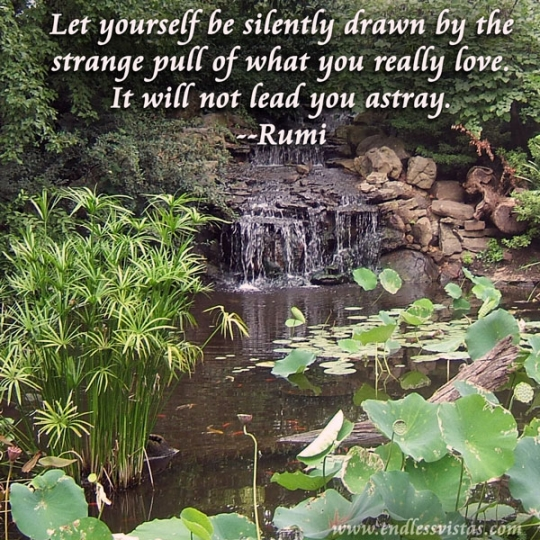 Let Yourself be Silently Drawn